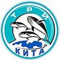 Три кита
